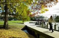国内大二不满意所读专业,重新定位喜获怀卡托大学录取offer!