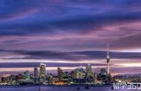 新西兰留学十步规划,你进行到了哪一步?