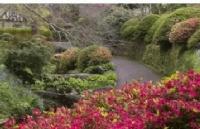 2019年新西兰大全之:新西兰风情万种的花园