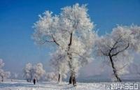 你有一个韩国成均馆大学冬季学期项目待查看