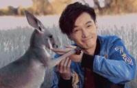 留学为什么选择澳洲?大概是因为土澳满足了我的一切幻想!