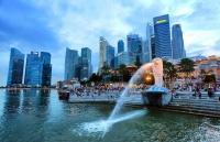 新加坡各类签证申请的基本信息