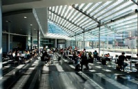 新西兰留学:新西兰雅思在奥克兰有7大雅思考点