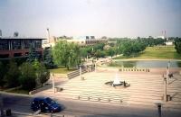有着加拿大最好的商学院――舒立克商学院的约克大学