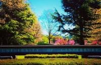 什么是坎特伯雷大学UCIC快捷课程?