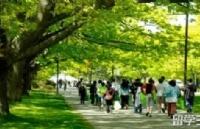 加拿大留学小提示:有助于你快速熟悉留学生活