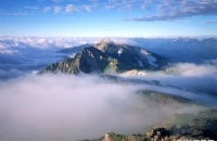 一篇文章让你告别韩国留学专业选择困难症