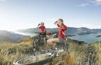 新西兰留学坎特伯雷大学院系及本科课程设置