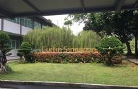新加坡科廷大学――在新加坡感受科廷式教育