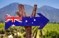 最新数据!澳洲在读中国学生创历史新高!