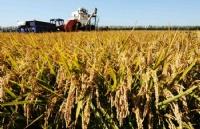 澳洲就业新缺口!农业商学专业让你轻松进入跨国集团!