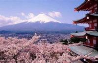 去日本留学是选文科还是理科