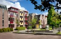 在荷兰奈尔洛德商业大学留学是一种什么体验?