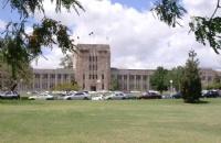 中央昆士兰大学与国家基因库携手保护考拉