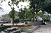 曼谷大学留学生人数