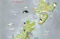 新西兰最萌专业,带你看遍神奇动物!