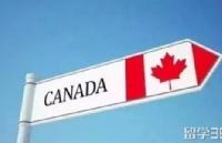 加拿大商科到底学什么?加拿大留学的你还能完美逆袭吗?