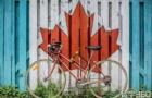 中专生去加拿大留学有哪些方案?