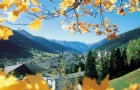 在瑞士酒店管理学院毕业后,学生有哪些职业发展机会呢?