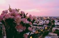有人问我是不是在天堂,我只是在墨尔本看夕阳
