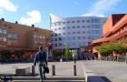 瑞典留学指南:毕业后怎么申请找工作签证?