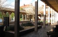看双非背景如何获录澳洲八大之一的阿德莱德大学