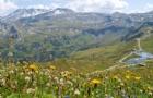 全球最适合养老国家出炉,瑞士简直是天堂
