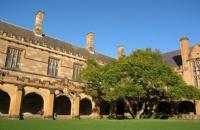 国内考研失利,后逆袭澳洲悉尼大学