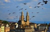 瑞士公立大学圣加仑大学
