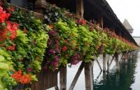 HTMi国际酒店旅游管理学院在地理位置上有什么优势?