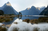 你是新西兰留学小白?没关系,看完这些就知道了!