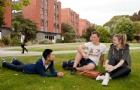 新西兰林肯大学学分及三年学士学位课程计划详解