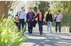 新西兰留学:奥克兰大学本科学习的桥梁课程