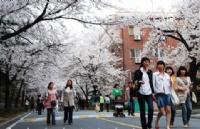 喜大普奔!现在去韩国留学签证,存款证明减半!