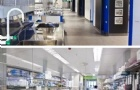 奥克兰大学医学与健康科学学院本科课程、研究生课程技术