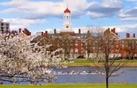 """哈佛录取的学生不单单只会考试,还会自行""""发光"""""""