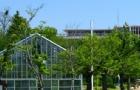 韩国留学早申请少受罪:没有TOPIK4级博士签证都拿不到了