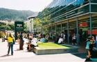 高中毕业成绩没达到新西兰大学要求,获惠灵顿维多利亚大学预科课程录取