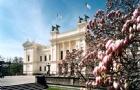 完美的申请,完美的结果!瑞典隆德大学offer到手