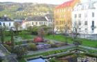 心之所向,披荆斩棘,挪威卑尔根大学offer喜到手!