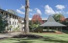 2019高中毕业生,有哪些途径能入读澳大利亚大学本科