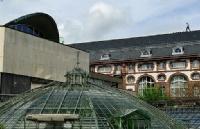 瑞士公立的巴塞尔大学实力为什么这么出众?