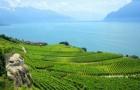 瑞士留学签证的办理,需要准备好哪些?