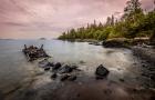加拿大留学热门专业详解:环境科学