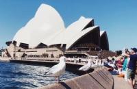 你将赴澳留学的城市天气如何你知道吗?知道几月份去哪里旅游最适合吗?