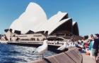 你将赴澳洲留学的城市天气如何你知道吗?知道几月份去哪里旅游最适合吗?