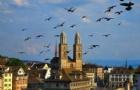 瑞士留学预警:做好心理准备再去瑞士留学高中