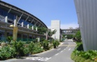 新加坡越来越多的学生放弃就读初级学院转读理工学院的原因是?