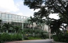新加坡留学这些专业,就业不成问题!