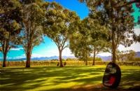 新西兰留学:新西兰留学入境前准备清单